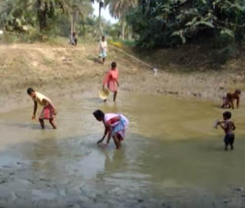 mud-fishing